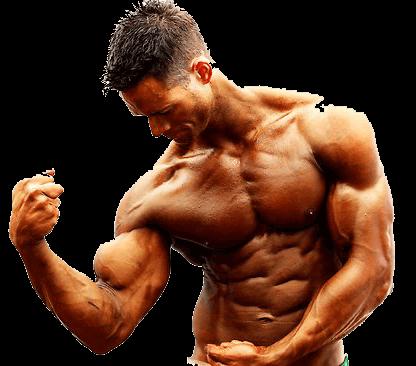 masa muscular con ciclos de Anadrol