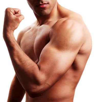 двуглавой мышцы
