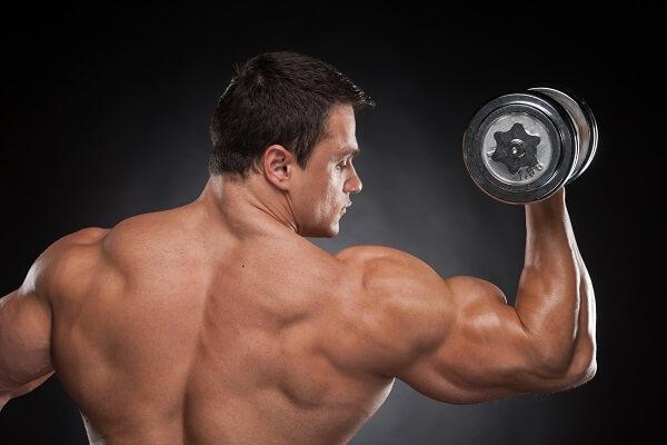 Guadagnare Muscoli
